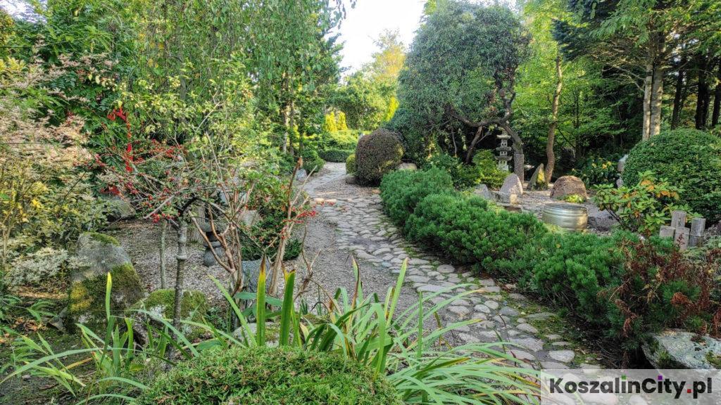 Alejka w ogrodach Hortulus koło Koszalina
