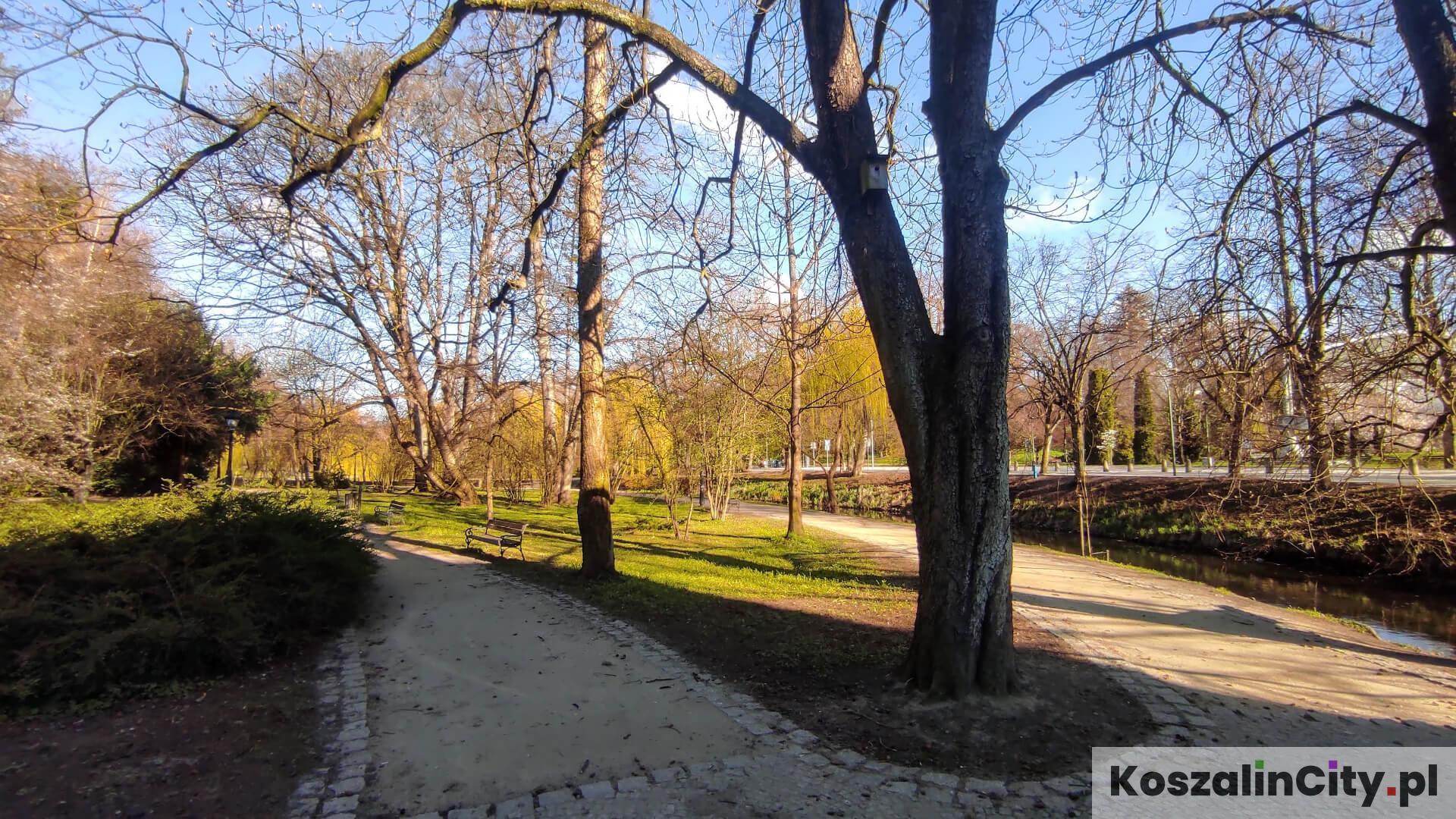 Alejki w Parku Książąt Pomorskich w Koszalinie