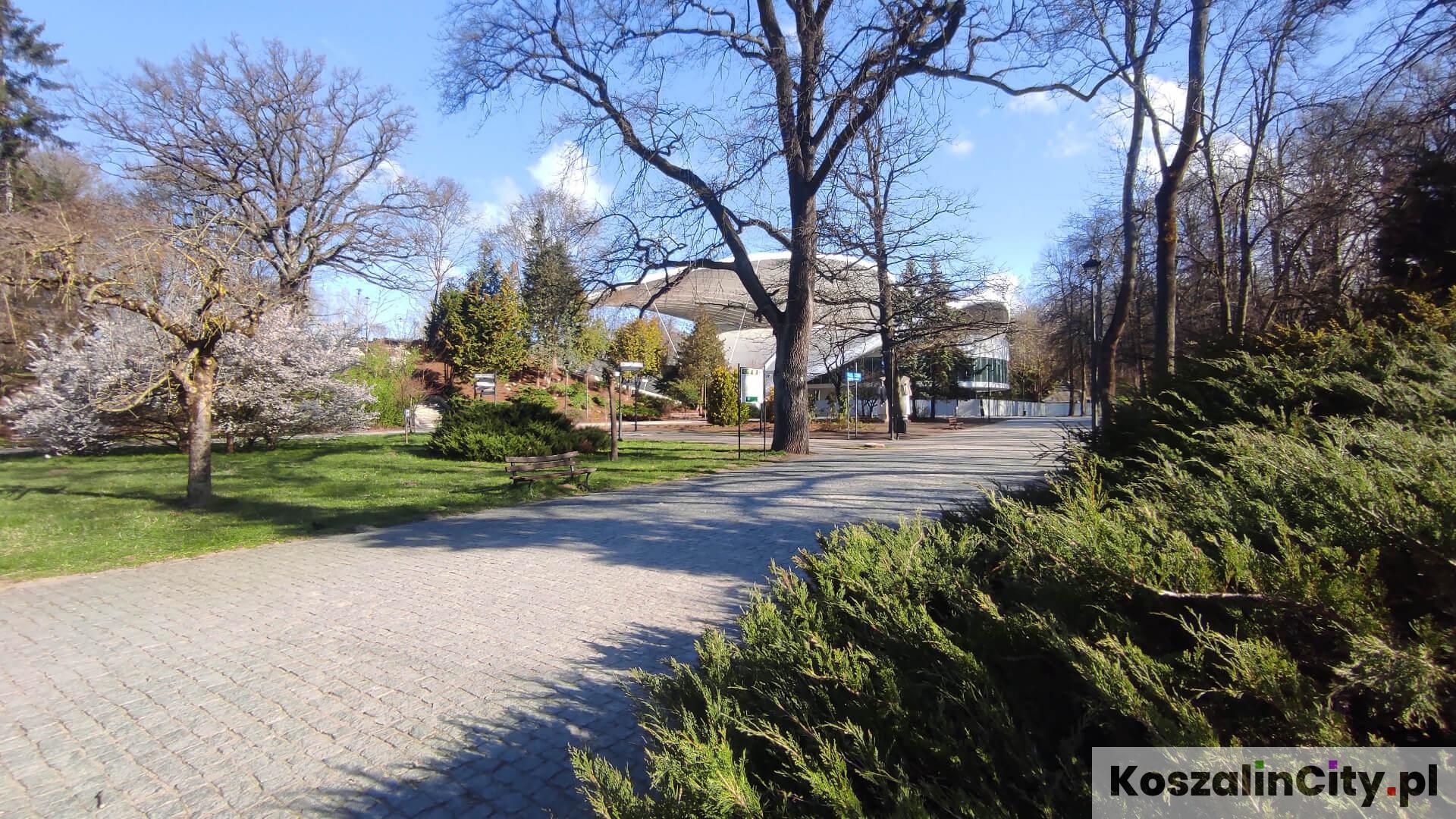 Amfiteatr w Koszalinie