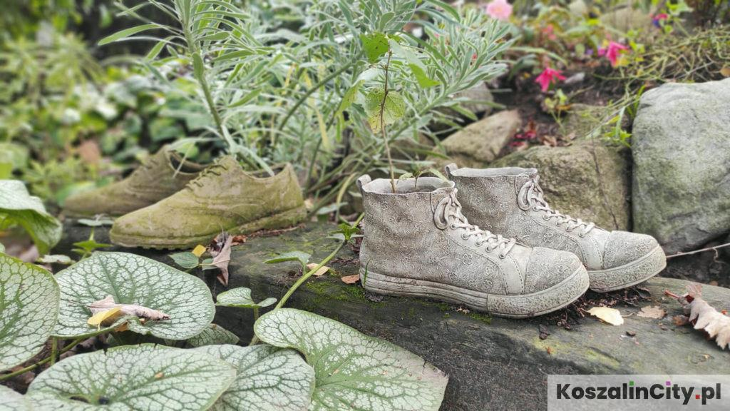 Buty w ogrodzie jako doniczka