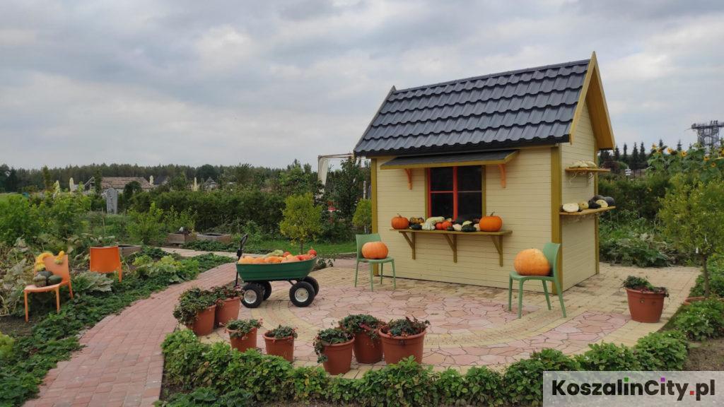 Dyniowy domek w ogrodach tematycznych Hortulus koło Koszalina