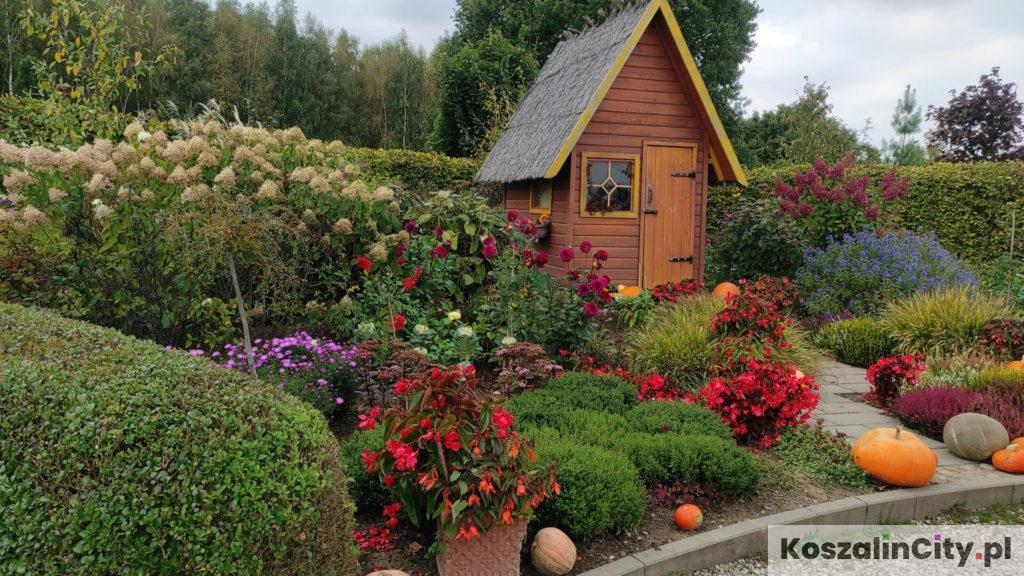Kolorowe ogrody Hortulus w Dobrzycy