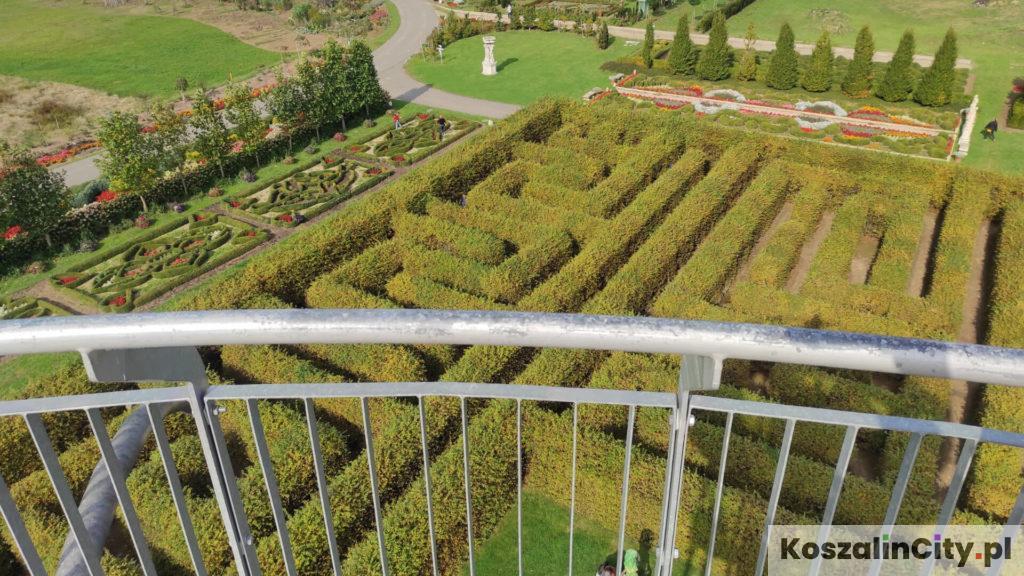 Labirynt w ogrodach Hortulus - widok z wieży widokowej