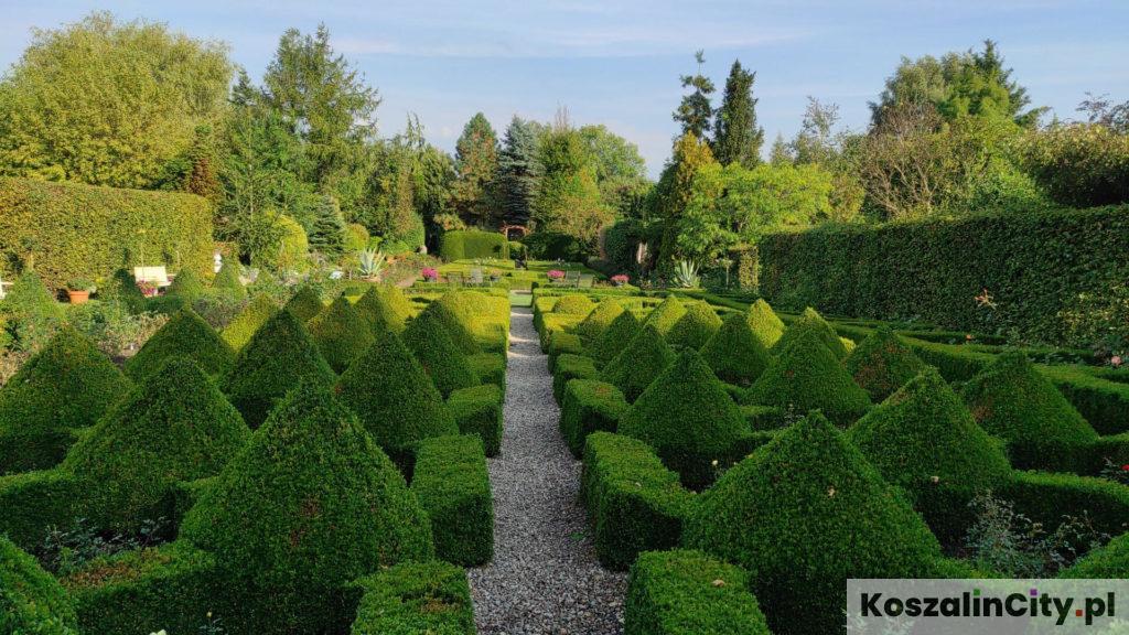 Ogród angielski w Ogrodach Tematycznych Hortulus w Dobrzycy