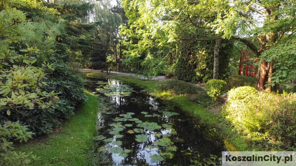 Ogród japoński w ogrodach Hortulus