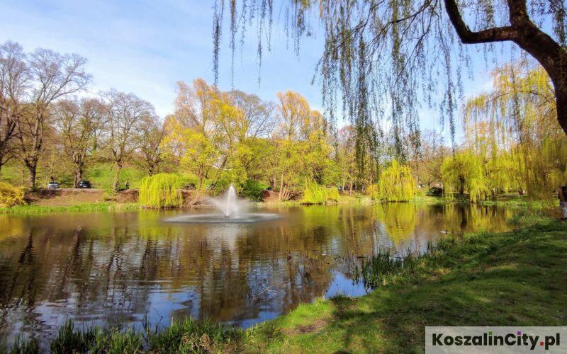 Park Książąt Pomorskich w Koszalinie
