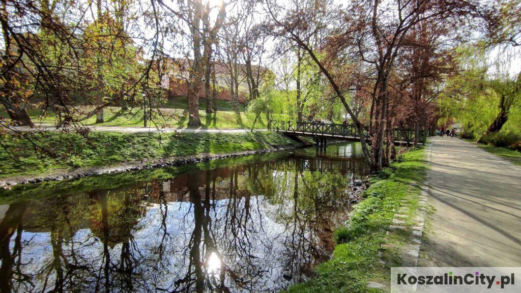 Rzeka w Parku Książąt Pomorskich w Koszalinie