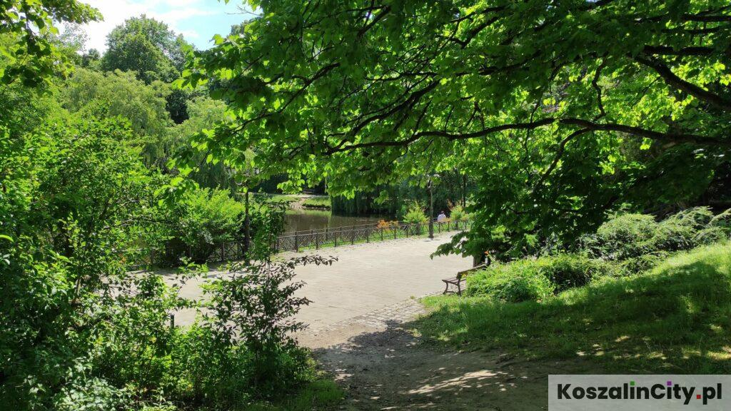 Staw w parku Książąt Pomorskich w Koszalinie