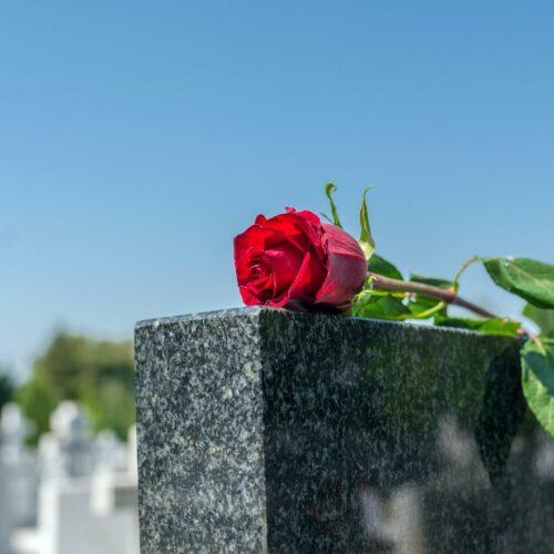 Cmentarz Komunalny w Koszalinie – internetowa wyszukiwarka grobów