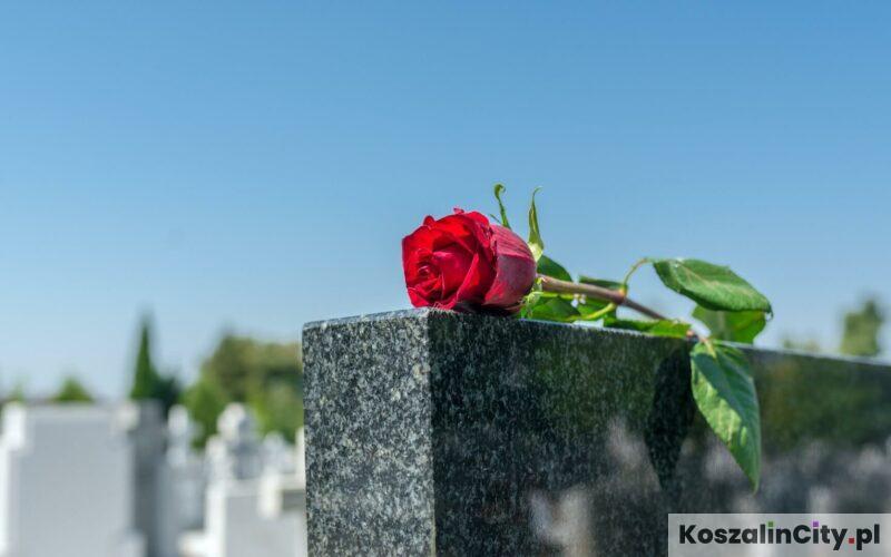 Cmentarz Komunalny w Koszalinie i Internetowa Wyszukiwarka Grobów