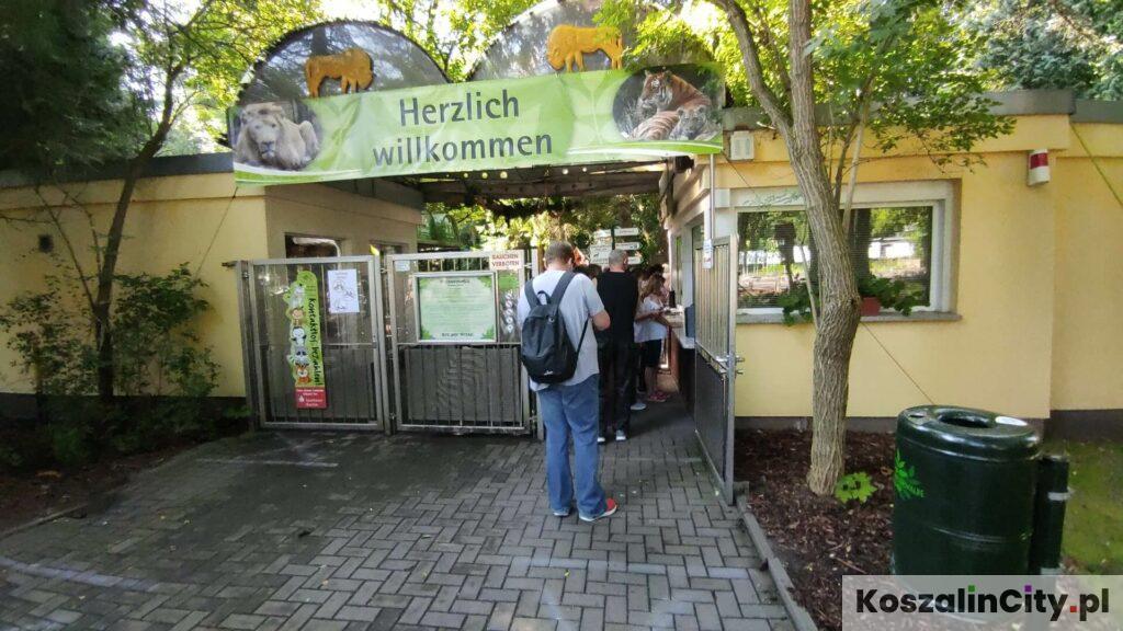 Eberswalde Zoo pod Berlinem w Niemczech