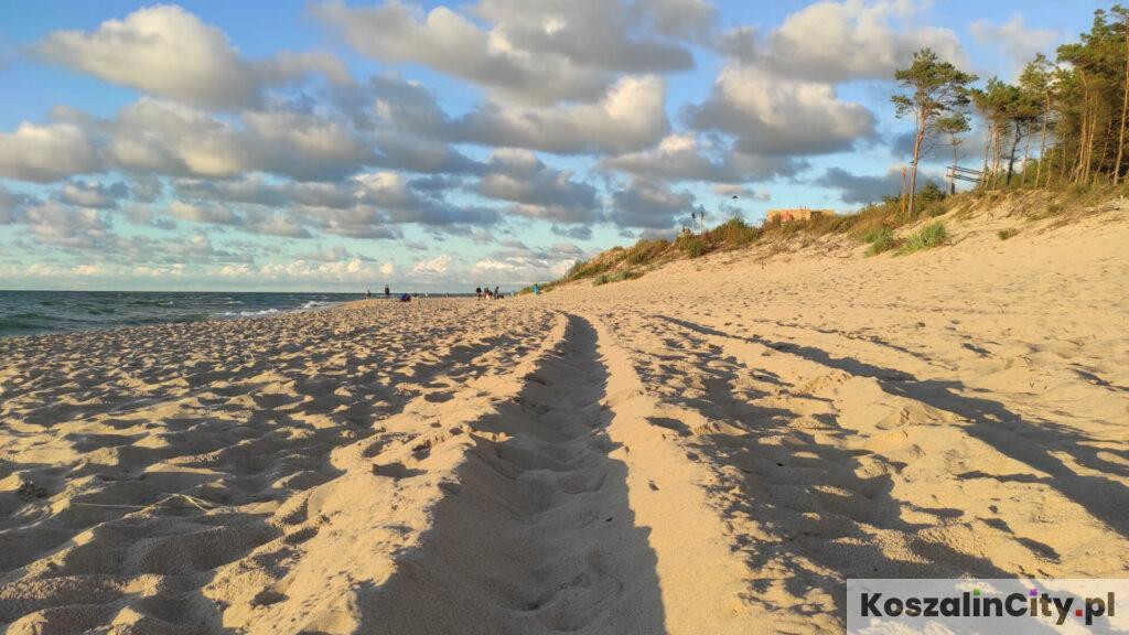 Plaża w Łazach