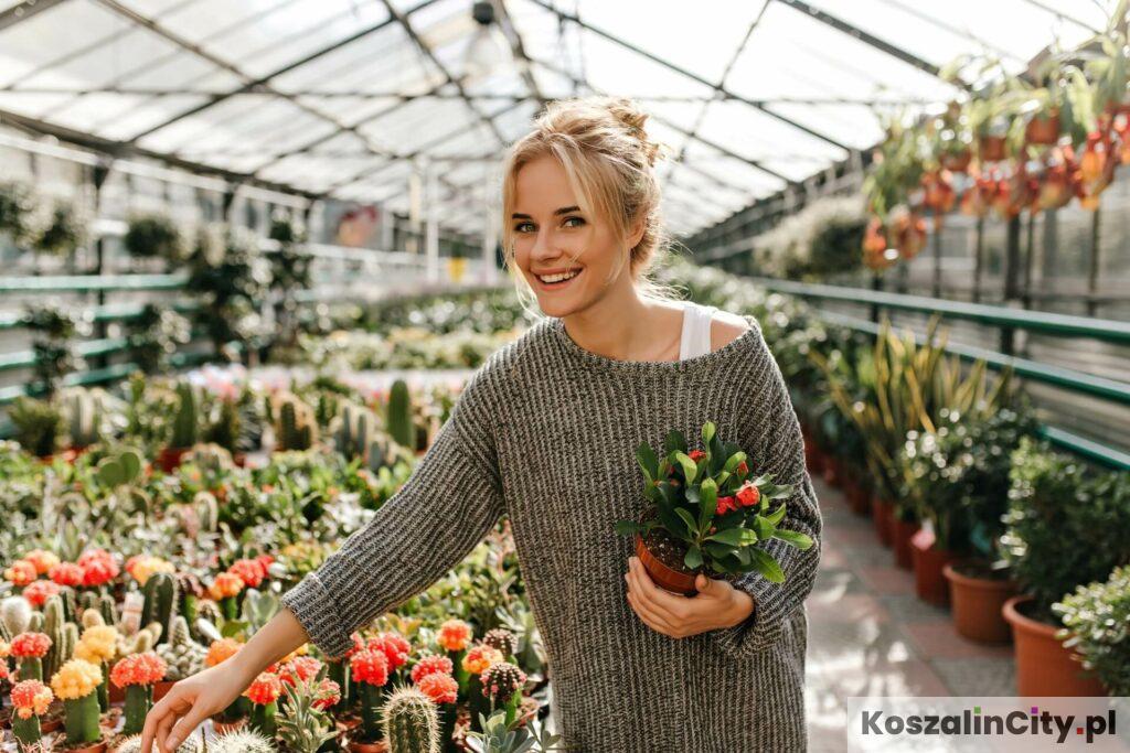 Sklep ogrodniczy w Koszalinie z egzotycznymi roślinami