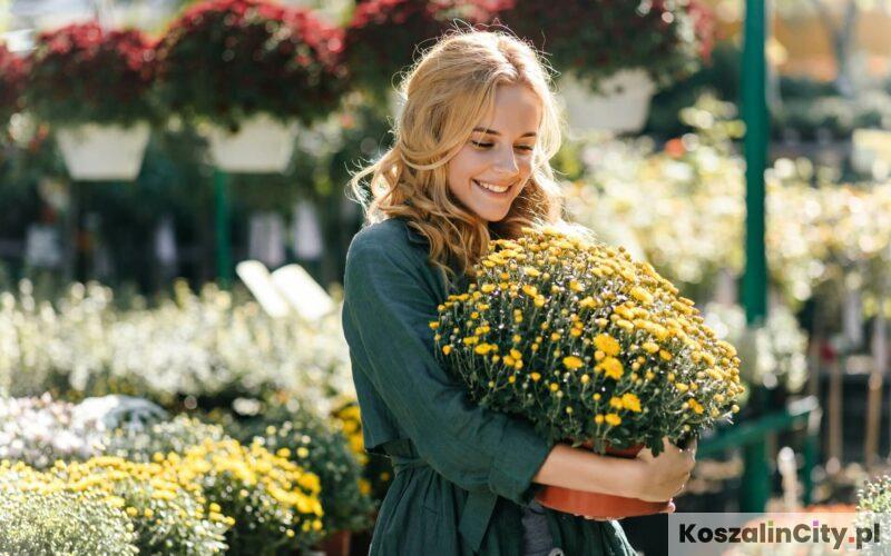 Sklep ogrodniczy w Koszalinie – które centrum ogrodnicze jest największe?