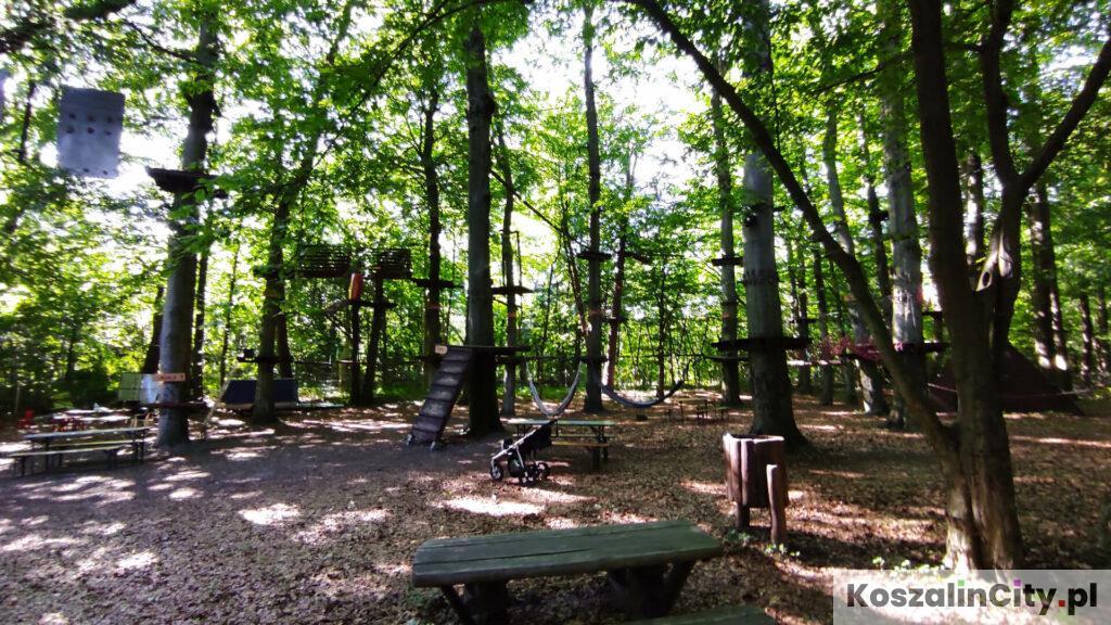 Park linowy pod Górą Chełmską w Koszalinie