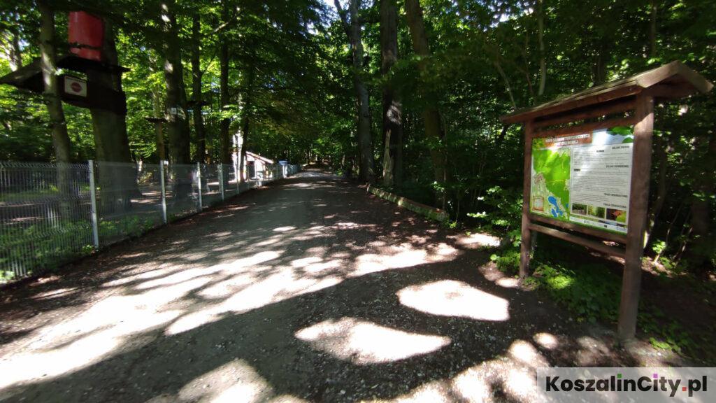 Wejście na Górę Chełmską od strony parku linowego i ulicy Rolnej