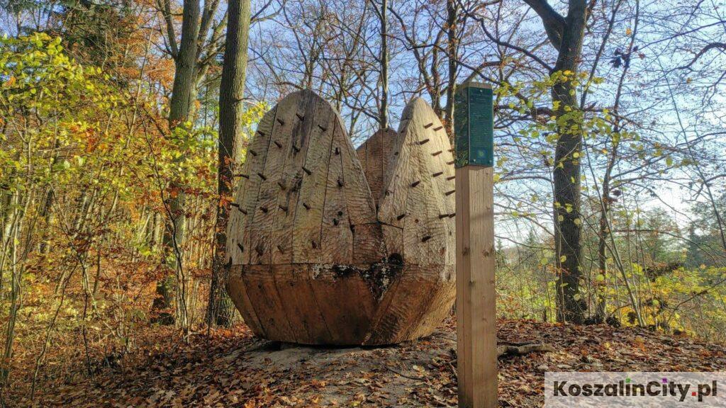Pomnik szyszki w Koszalińskim Parku Nadmorskim w okolicach bunkrów