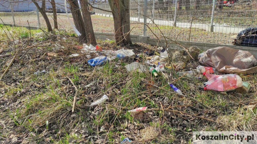 Śmieci wyrzucane z samochodów przy drogach