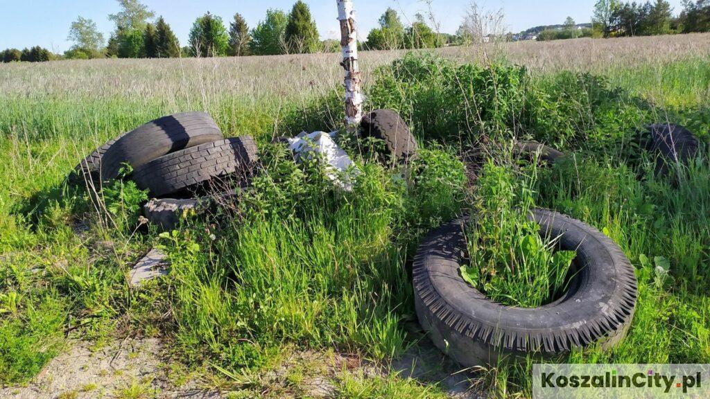Stare opony wyrzucone przy polnej drodze