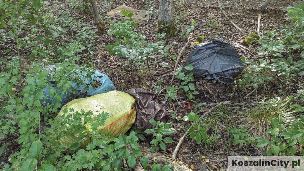 Worki ze śmieciami wyrzucone w lesie